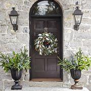 flowerpot, door, wall, home door, house, stone wall, fixture, door handle, street light, arch,