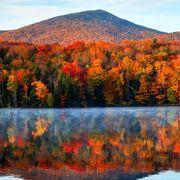 fall foliage map