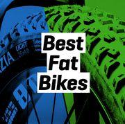 The Best Fat Bikes