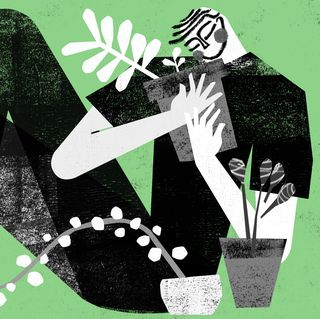illustration of a person holding the plant