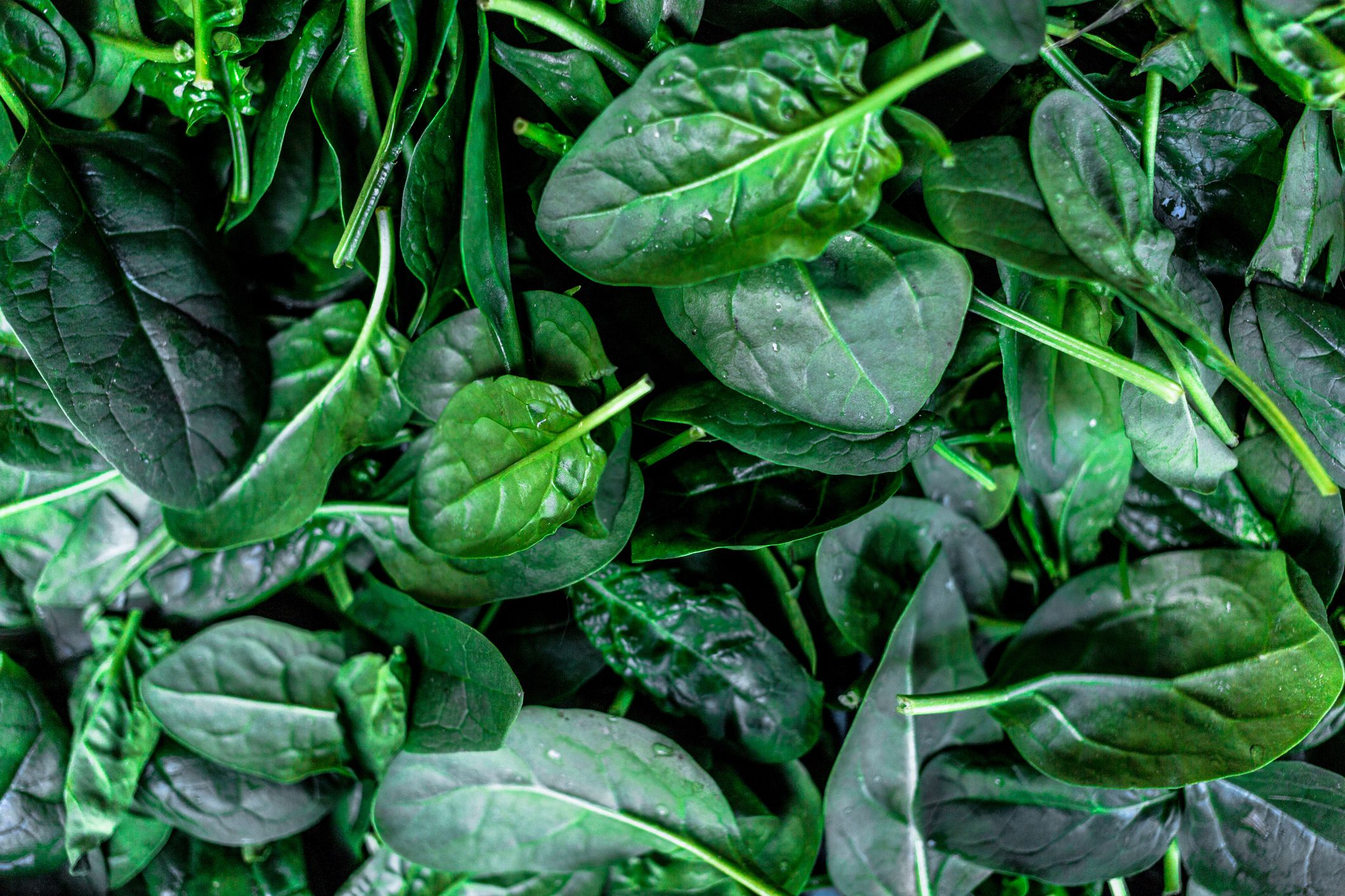 Full Frame Shot Of Spinach Leaves