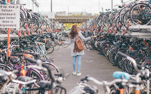 heel veel fietsen