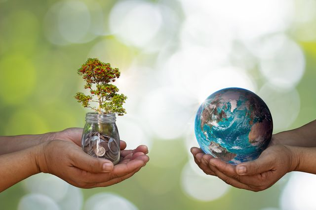 one pair of hands holding a tree, the other holding the earth