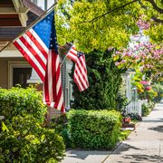 Flag of the united states, Flag, Green, Home, Daytime, Leaf, Tree, House, Spring, Real estate,