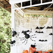giant spiders and spiderweb