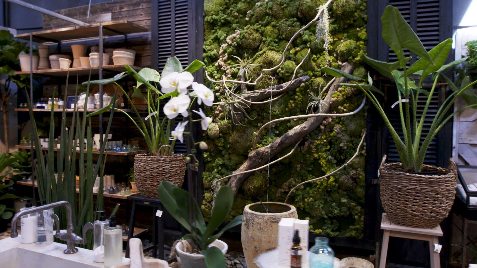 Terrain's Westport Store Is Basically Plant Heaven