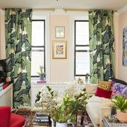 Living room, Room, Interior design, Green, Property, Furniture, Building, Home, House, Window,