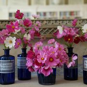 charlotte moss flower arrangements