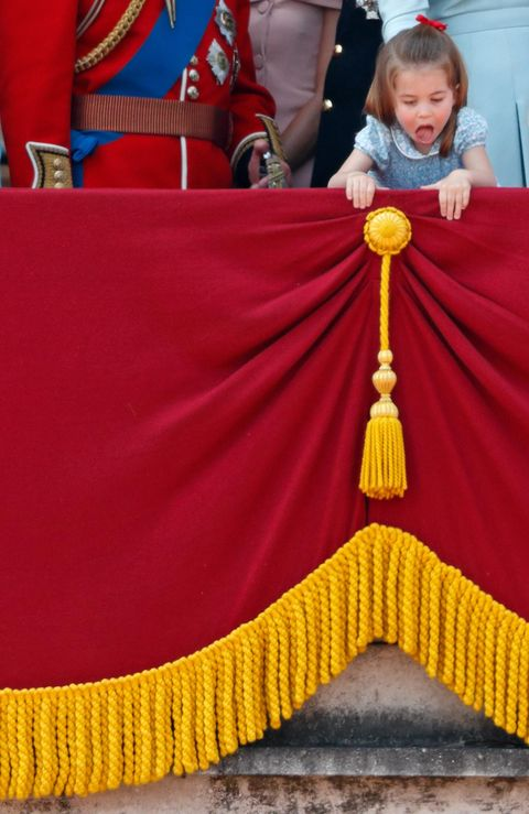 Yellow, Flag, Lama,