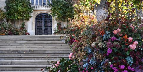 Flower, Wall, Plant, Garden, Tree, Spring, Shrub, Architecture, House, Home,