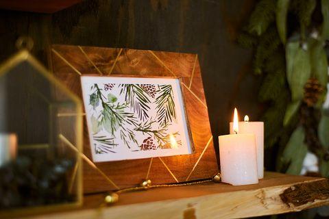Lighting, Leaf, Design, Tree, Room, Candle, Plant, Interior design, Interior design, Flower,