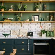 shelf, room, furniture, countertop, green, kitchen, interior design, cabinetry, wall, shelving,