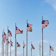 Flag, Flag of the united states, Sky, Pole, Plant, Wind, Veterans day,