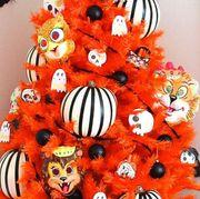Orange, Red, Organism, Fashion accessory, Art,