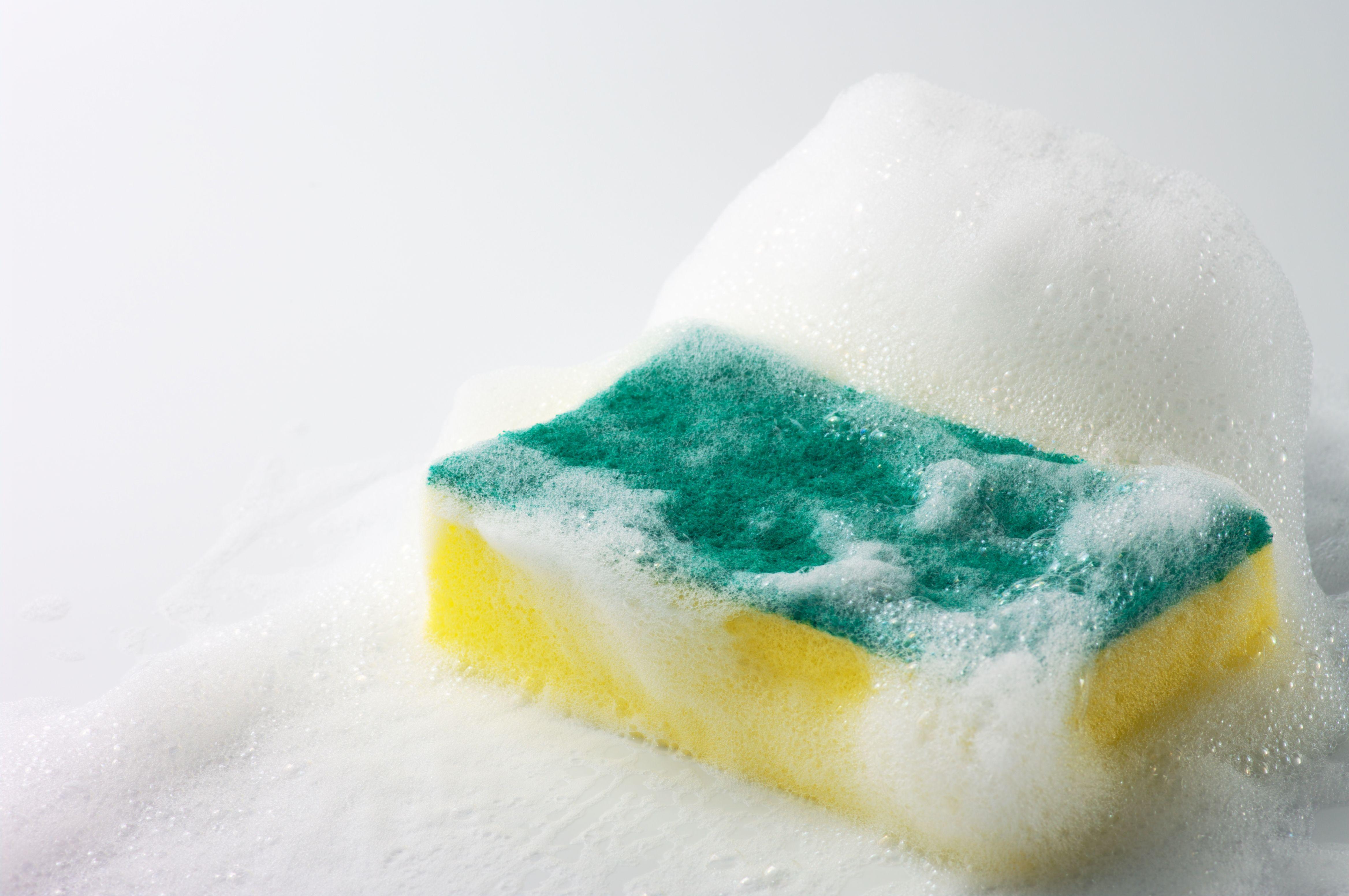 lathery sponge