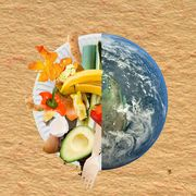 earth and composting