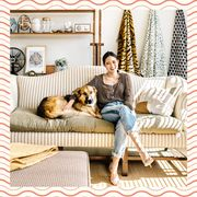 Room, Couch, Furniture, Interior design, Companion dog, studio couch, Living room, Comfort, Window covering, Canidae,