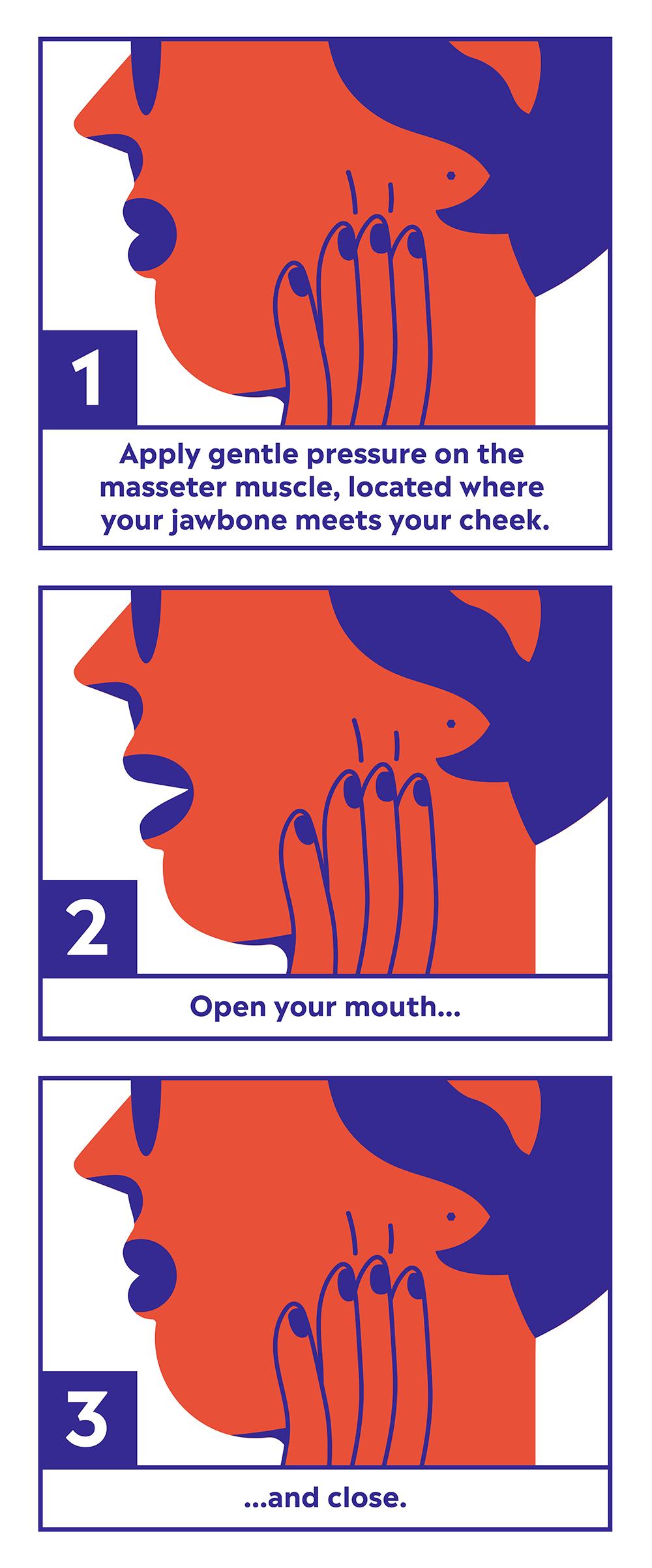 Masseter Massage diagram