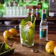 Drink, Mojito, Lemon-lime, Key lime, Food, Lime, Alcoholic beverage, Gin and tonic, Caipirinha, Limonana,