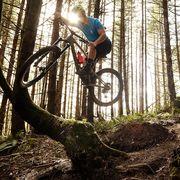 Bicycle, Downhill mountain biking, Cycling, Mountain bike, Vehicle, Cycle sport, Mountain biking, Freeride, Mountain bike racing, Tree,
