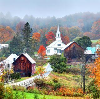 Misty Autumn Foliage in Rural Vermont
