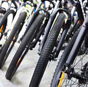 modern mountain bikes in sports shop