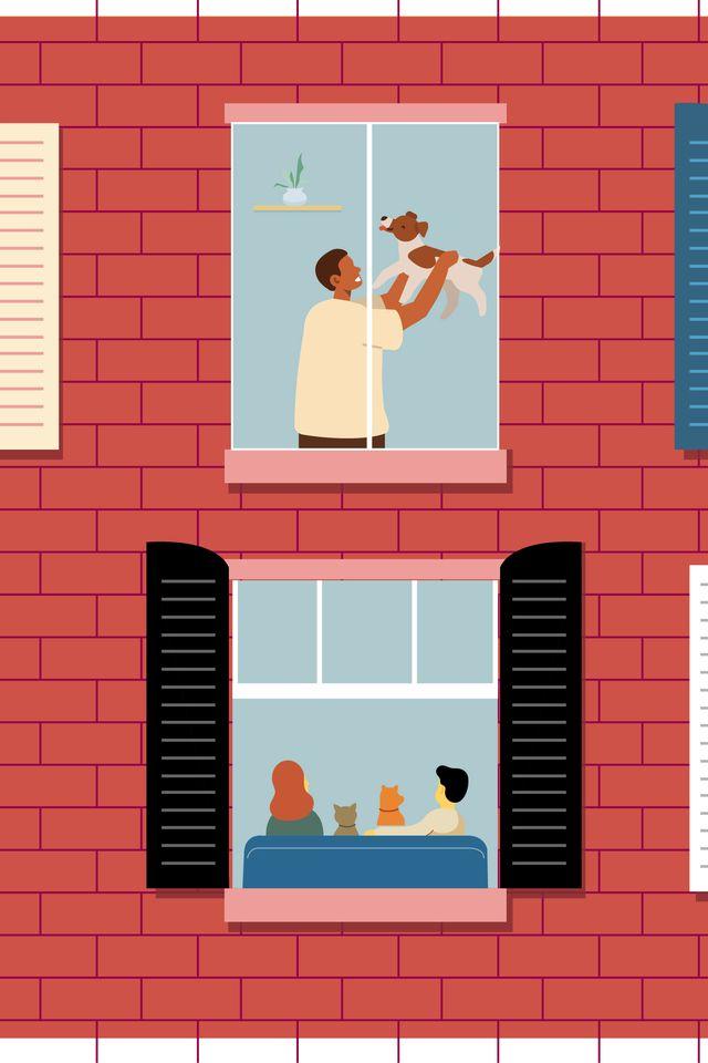 illustration for pets