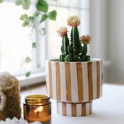 kaya shorty ceramic planter by justina blakeney™