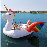 Swan boat, Water transportation, Pink, Boat, Swan, Vehicle, Inflatable, Water bird, Bird, Boating,