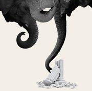 elephant columns gop women