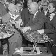 Eisenhower with Turkey