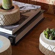 Flowerpot, Table, Houseplant, Interior design, Room, Architecture, Coffee table, Plant, Furniture, Ceramic,