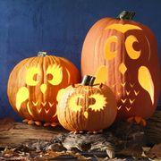 pumpkin stencils lead