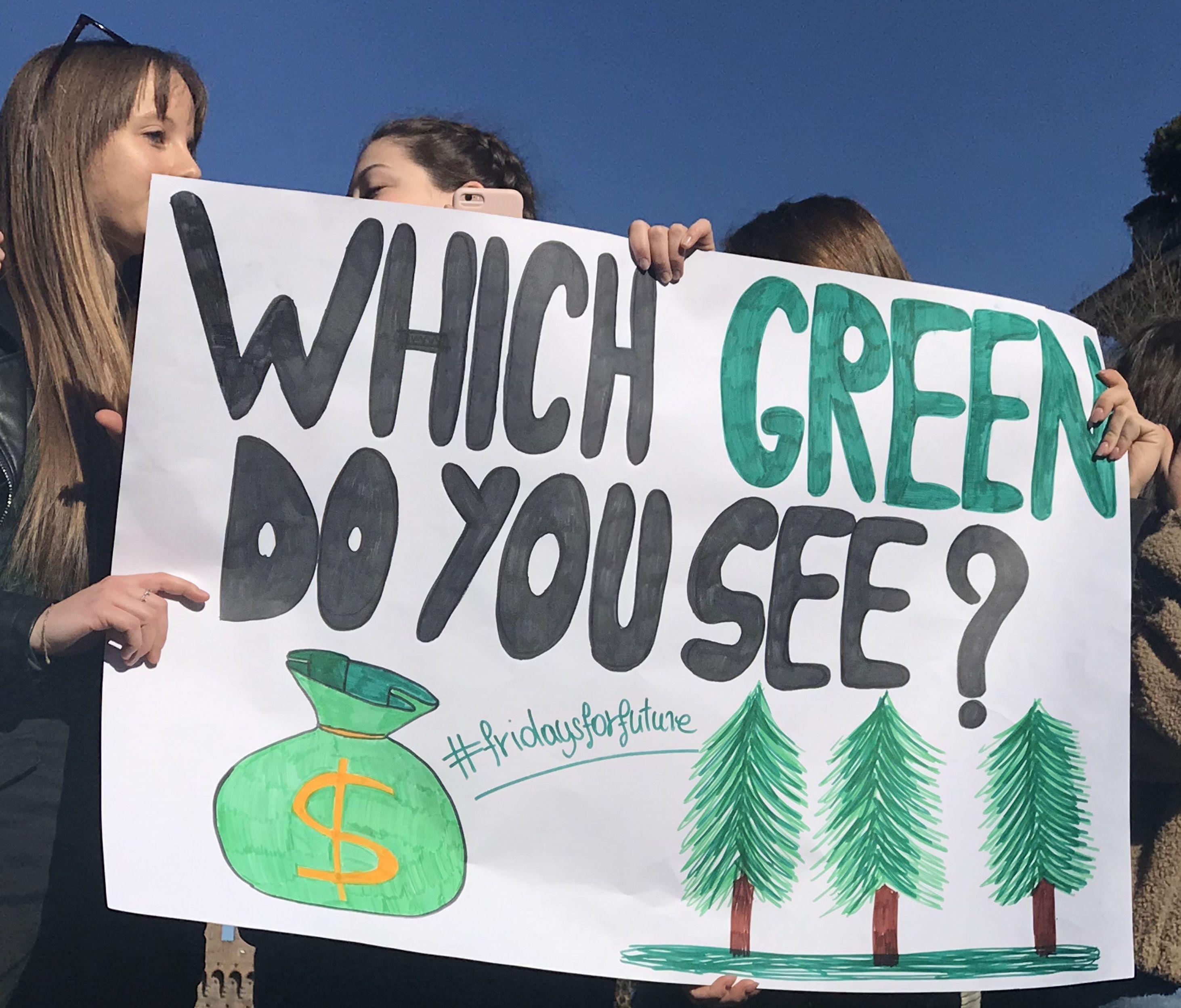 Fridays For Future, i giovani in piazza scioperano per l'ambiente e il clima: non c'è più tempo da perdere