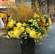 Flower, Yellow, Floristry, Plant, Flower Arranging, Floral design, Cut flowers, Bouquet, Spring, Tree,