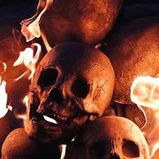 Bone, Skull, Art, Anthropology, Still life photography, Skeleton, Heat,