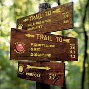 Nature reserve, Natural landscape, Natural environment, Tree, Forest, National park, State park, Signage, Trail, Wood,