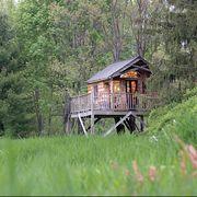 treehouse in backyard