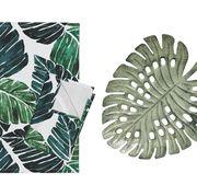 monstera leaves tropical decor