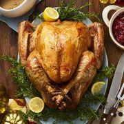 turkey recipes dry brined lemon rosemary roasted turkey