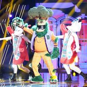 who is the broccoli masked singer