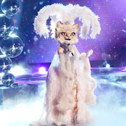 who-is-the-kitty-masked-singer
