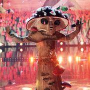 who is the mushroomr masked singer