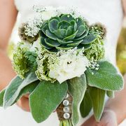 best winter wedding flowers