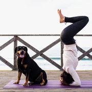 yoga mat cleaners best 2018