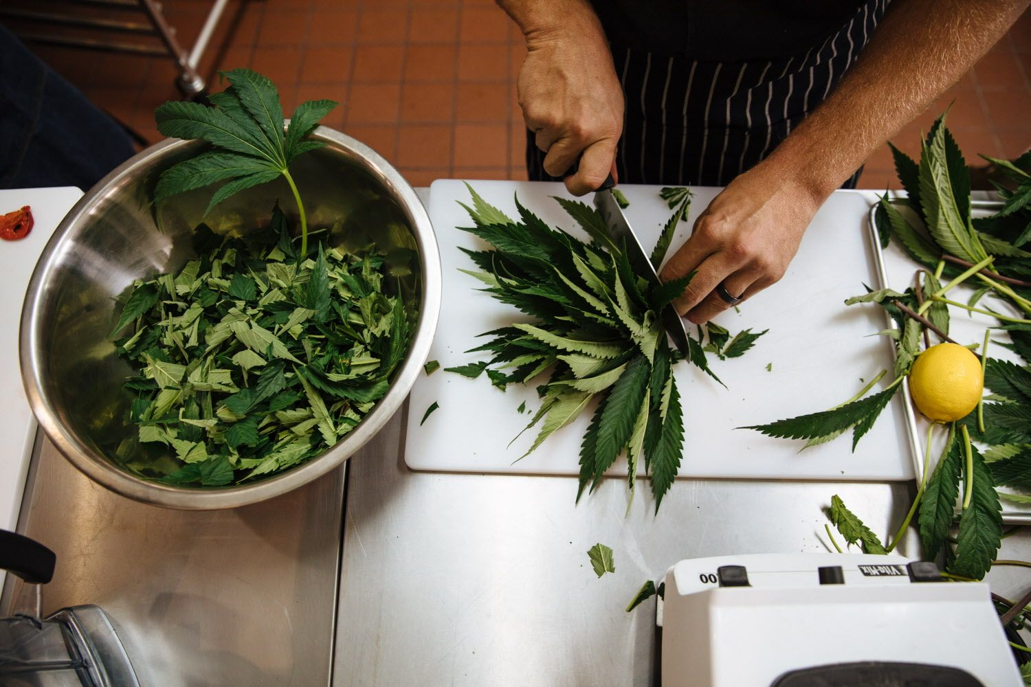 Payton Curry, founder of Flourish Cannabis, prepares to juice marijuana leaves, which will be served at their Cannavore Dining event in San Francisco, Calif. Tuesday, August 8, 2017. Photo: Mason Trinca