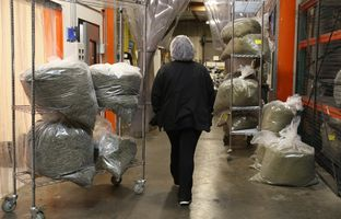 Incoming cannabis waiting on test results at Kiva's chocolate factory on Friday, August 11, 2017, in Oakland, Calif..