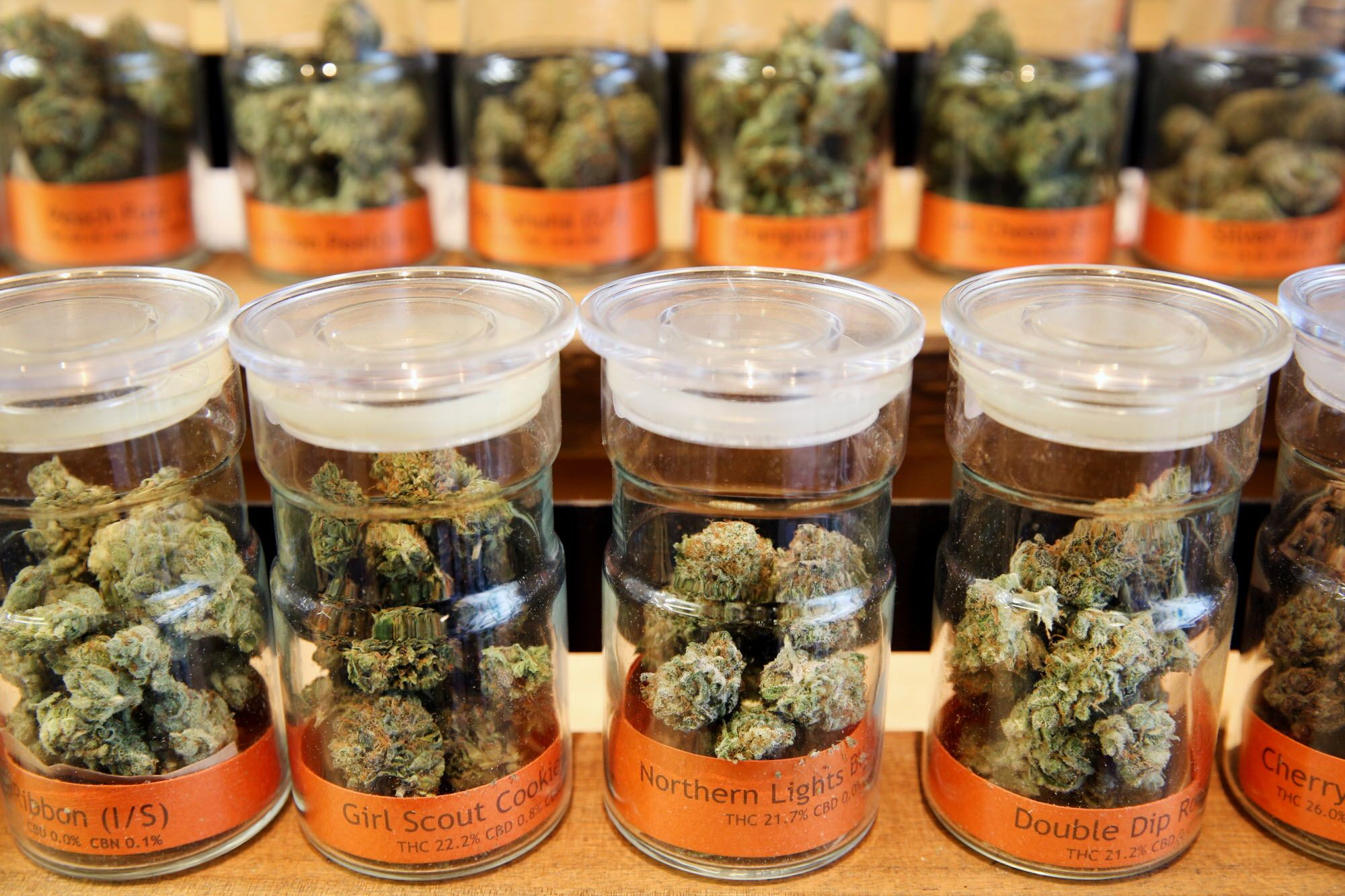 Cannabis buds at the Bloom Room Cannabis Collective on Wednesday, Feb. 22, 2017, in San Francisco, Calif.