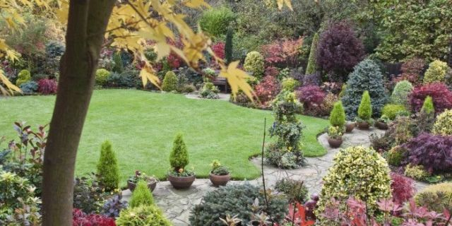 5 ways to prepare your garden for winter - How to prepare garden for winter ...