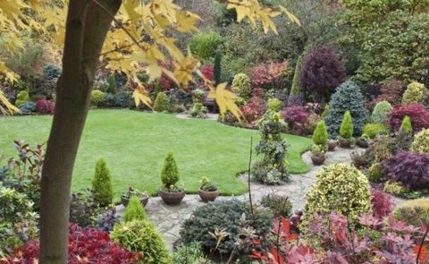 Shrub, Plant, Garden, Landscape, Botany, Groundcover, Yard, Landscaping, Lawn, Backyard,